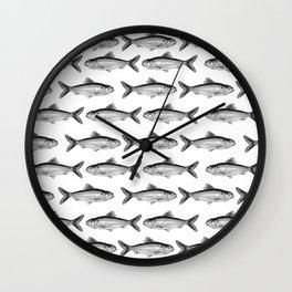 Alosa pseudoharengus (m) Wall Clock