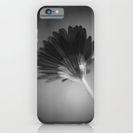 Gerbera III iPhone Case