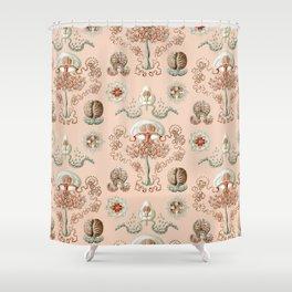 Ernst Haeckel - Jellyfish Scientific Illustration Shower Curtain