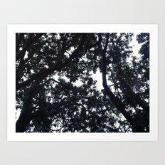 Under the trees Art Print