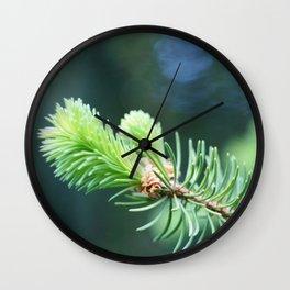Spruce branch in spring. Wall Clock