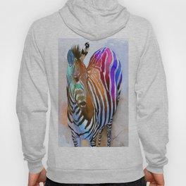 Colorful Zebra Hoody