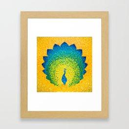 Sunny radiant peacock Framed Art Print