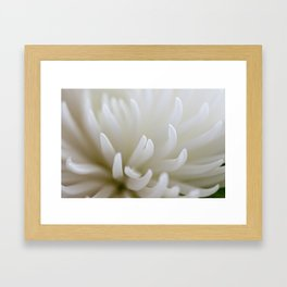White Petals Framed Art Print