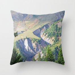 SWIFT CREEK HEADWATERS BELOW TABLE MOUNTAIN Throw Pillow