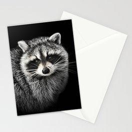 A Gentle Raccoon Stationery Cards