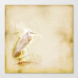 Antique style blue heron on textured background Canvas Print