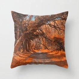Wye Island Amber Trail Throw Pillow