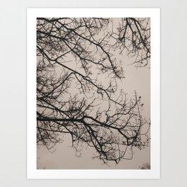 Bleak Winter Day Art Print