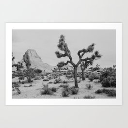 One of a Kind : Joshua Tree Art Print