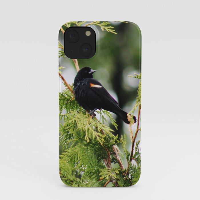 I Spy iPhone Case