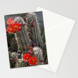 New Mexico Cactus Stationery Cards