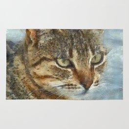 Stunning Tabby Cat Close Up Portrait Rug