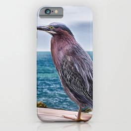 Key West Green Heron iPhone Case