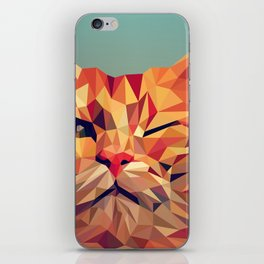 Geometric cat 2 iPhone Skin
