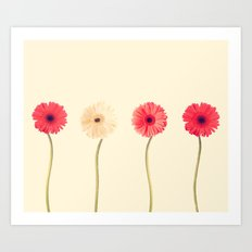 Technicolour Flowers  Art Print