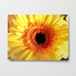 Yellow Gerbera Flower Metal Print