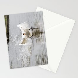 Swan take off Stationery Cards