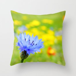 Bachelor's Buttons Flower Throw Pillow