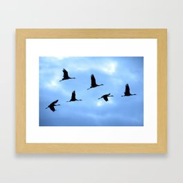 Welcome back! Cranes in flight #decor #society6 Framed Art Print