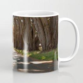 Tunnel of Trees Photography Print Coffee Mug
