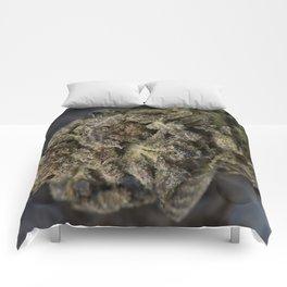Close up macro of Bordello Medicinal Medical Marijuana Comforters