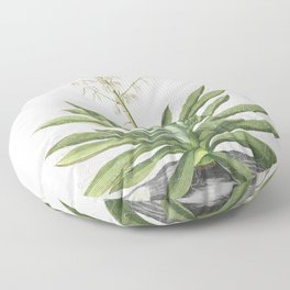 Plantae Selectae No 37-Yucca by Georg Dionysius Ehret Floor Pillow
