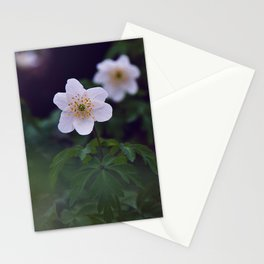Little white flower Stationery Cards