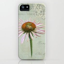 coneflower & bee postale iPhone Case