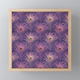 Violet peacock feather pattern from bird peacock Framed Mini Art Print
