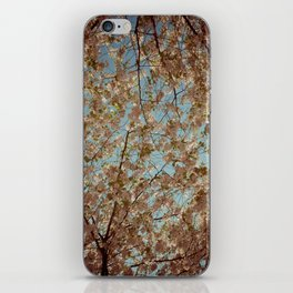 Vintage Flowers iPhone Skin