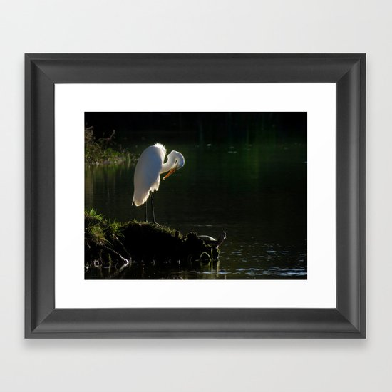 Egret at Evening Framed Art Print