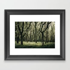 Moss Forest Framed Art Print