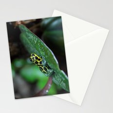 Poison Dart Frog R. Imitator Male Stationery Cards