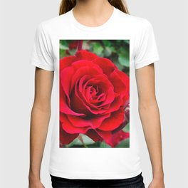 Rose revolution T-shirt