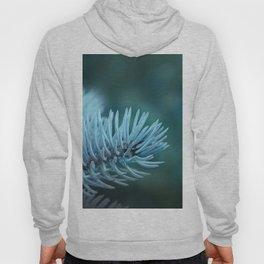 Blue spruce 2 Hoody