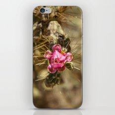 Eye of the Tiger  iPhone & iPod Skin