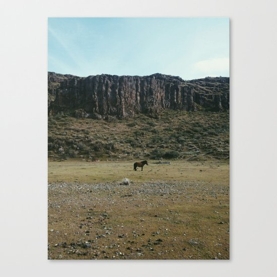Rock Pasture Pony Canvas Print