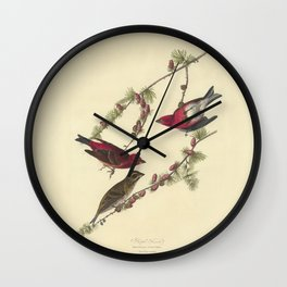 AUDUBON Bird Print Purple Finch Pinus Pendula lithograph color engraving Download Vintage Old Antique Wall Clock