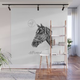 Affirmed (US) Thoroughbred Stallion Wall Mural