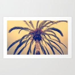Tenerife Palm Tree Art Print