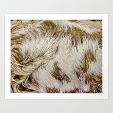 Boca Sloth coat  Art Print
