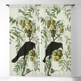 Vintage Crow Illustration Blackout Curtain