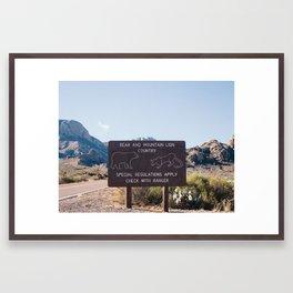 Lions & Tigers & Bears  Framed Art Print