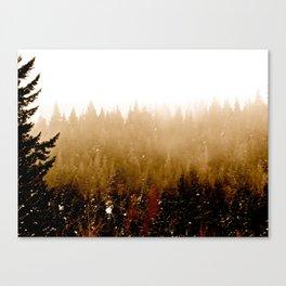 Warm Pines Canvas Print