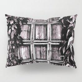 Black White Old Door Pillow Sham