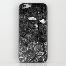 sprouting.. iPhone & iPod Skin