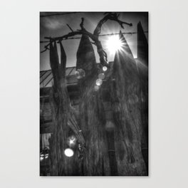 Clinging Vine Canvas Print
