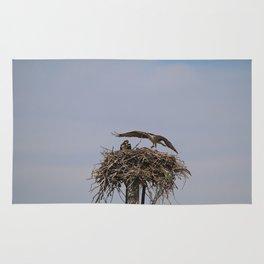 Ospreys Rug