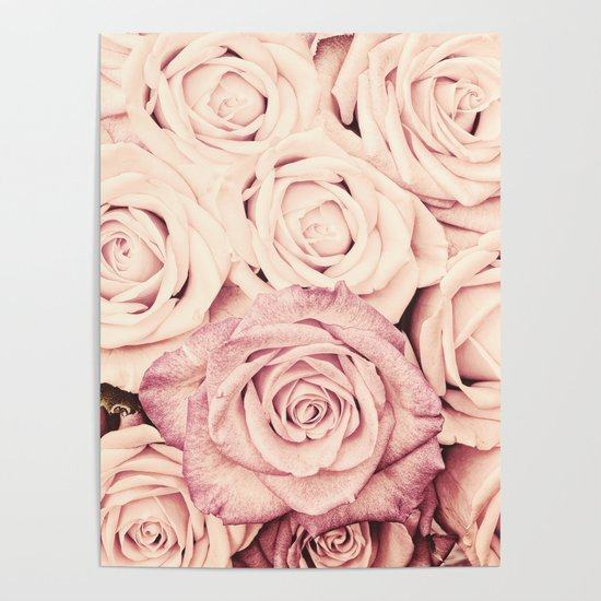 Some people grumble Floral rose roses flowers garden pink by originalaufnahme
